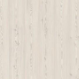 Белая сосна, Планка