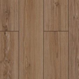 D3074 Дуб саверн (Saverne oak)