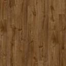 PUCL40090  Дуб осенний коричневый