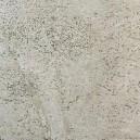 DS19001 Coralito