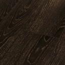1473917 Дуб золотой