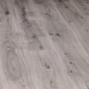 30403754 Дуб серебристо-серый