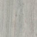 3350203 Дуб скальный